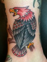 Traditional Eagle tattoo by Kevin Riley at Studio One Tattoo Norwood PA Philadelphia